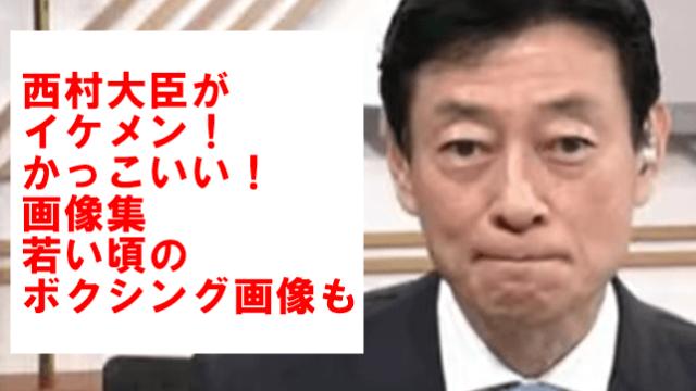 西村大臣 イケメン
