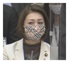 三原じゅん子 マスク バーバリー